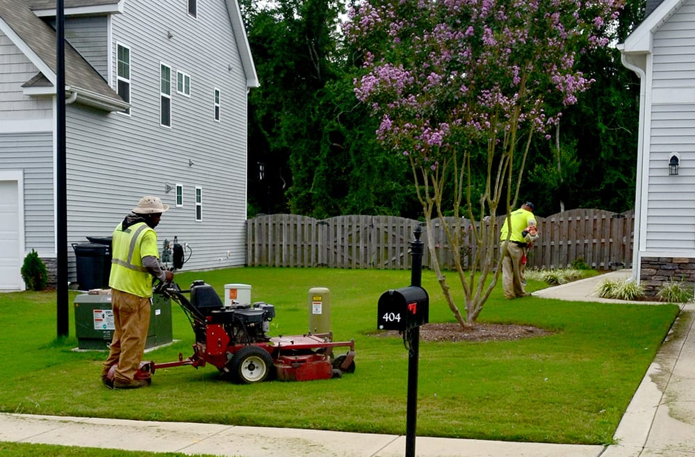 Mowing and Weed Eating